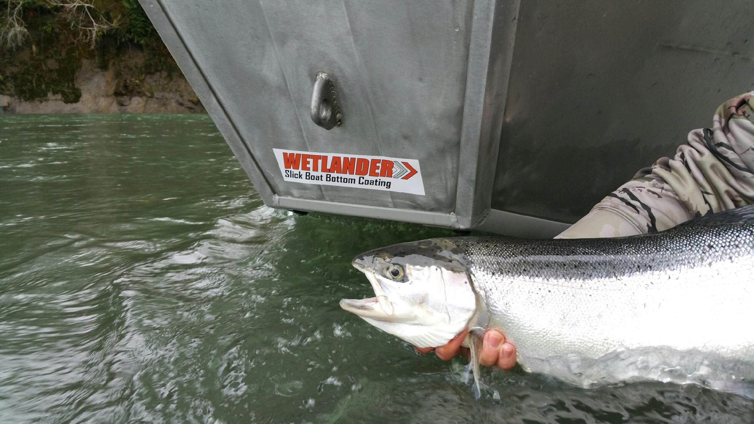 wetlander.com