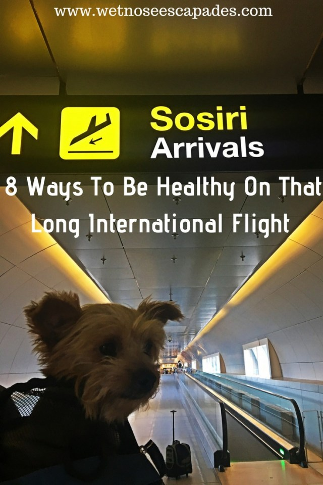 8 Ways To Be Healthy On That Long International Flight