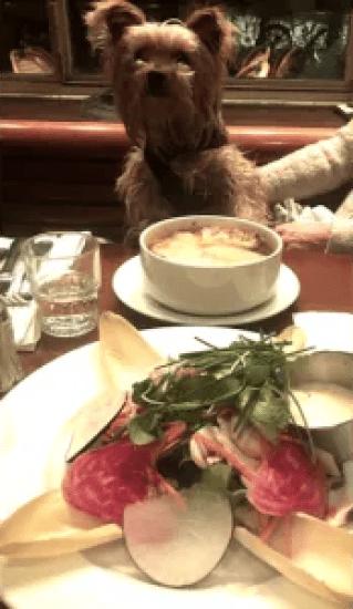 MUST-TRY Food in Paris: My 10 Picks!