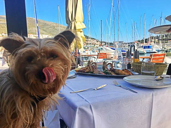 BEST Restaurants in Dubrovnik: 10 Places You MUST Try