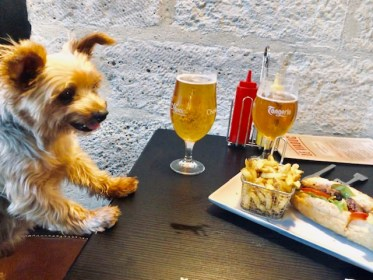 Dog Travel in Paris: Roger Wellington finds food in Paris