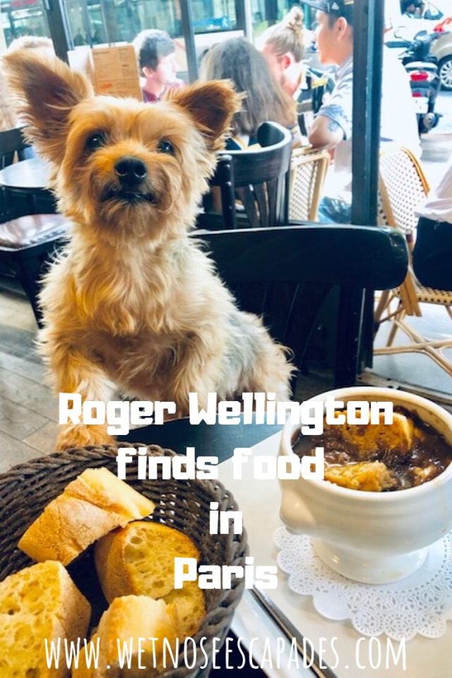 Roger Wellington finds food in Paris! (VIDEO)