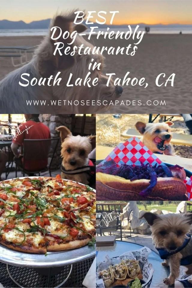 Dog-Friendly Restaurants in South Lake Tahoe, CA