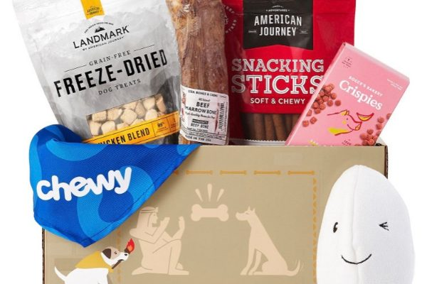 Goody Box_Gifts for Yorkies + Small Dogs: A Traveling Yorkie's Wish List