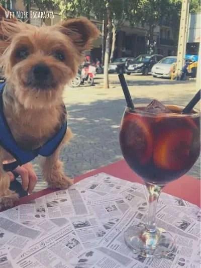 10 BEST Tapas in Barcelona, Spain