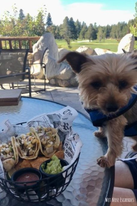 Edgewood Brook's, Dog-Friendly Restaurants in South Lake Tahoe, CA