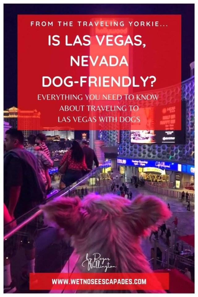 Dog-friendly Las Vegas Strip