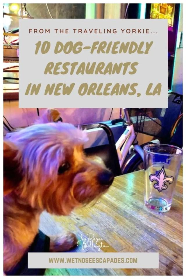 Dog-Friendly Restaurants in New Orleans
