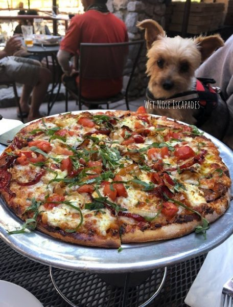 dog friendly restaurants south lake tahoe