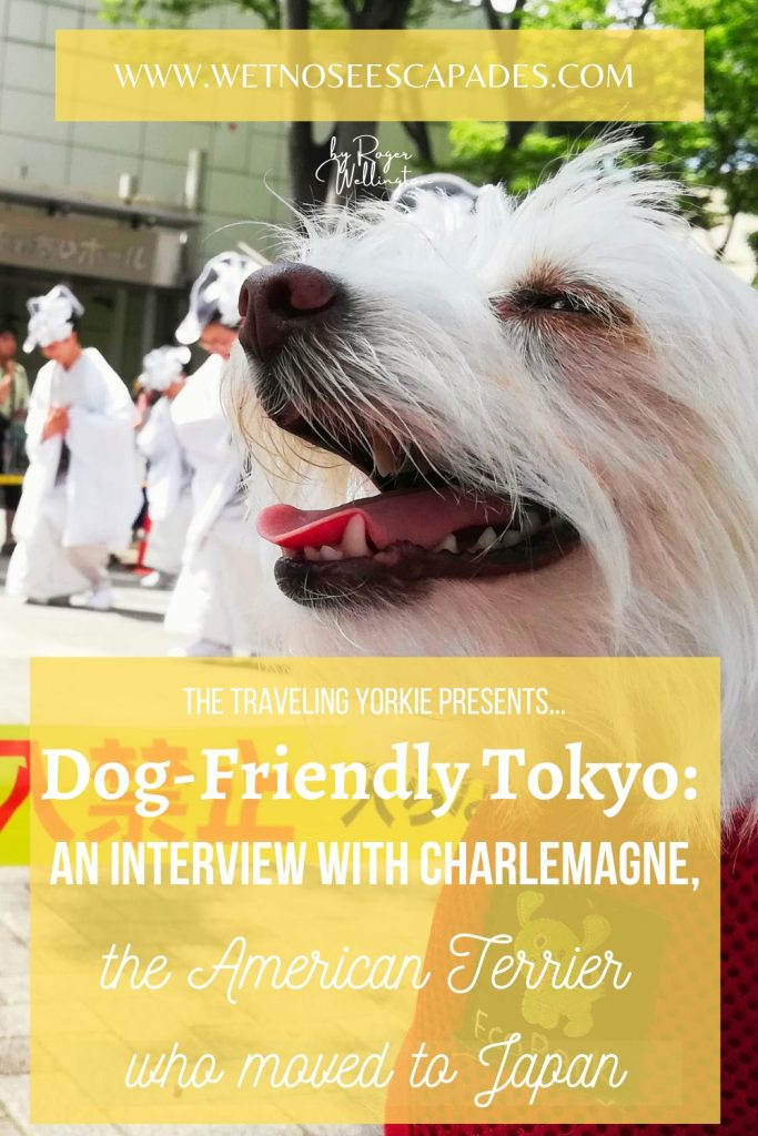 Dog-Friendly Tokyo Activities