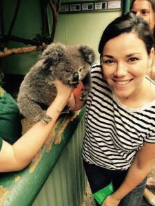 Best Things to Do in Sydney Australia Jen McDermott koala at Featherdale Wildlife Park