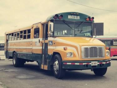 Schicke Busse gibt's hier