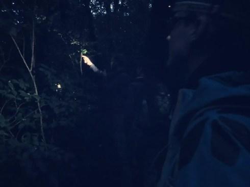 Mit Taschenlampe durch den Nebelwald