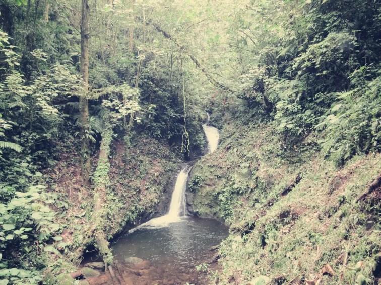Wasserfall Monteverde