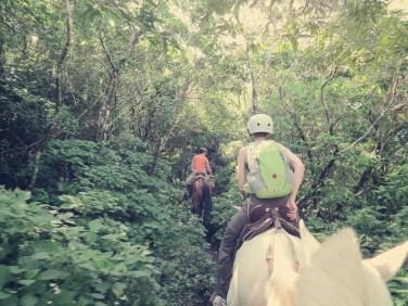 Es ging durch Dschungel, Wasser, über Felder und Nebel