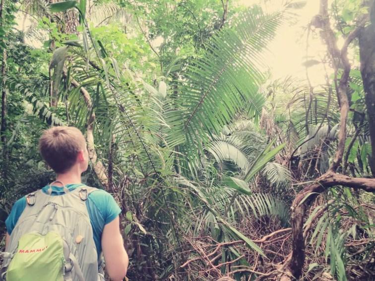 Rein in den Dschungel von Cabo Blanco