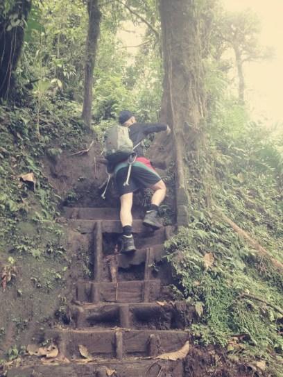 Der Weg vom See wieder hinauf in den Dschungel