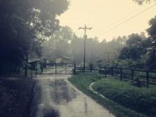 hört es auch nicht mehr auf ... Regenzeit halt.