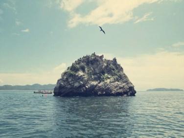 Schnorchel Spot - Felsinsel mit Fregattvögeln