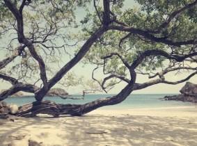 Playa Rajadita