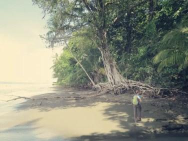 Immer wieder wechseln zwischen Strand und Dschungel