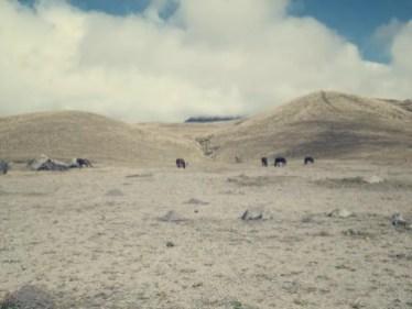 Anfangs war der Vulkan von Wolken verhüllt.