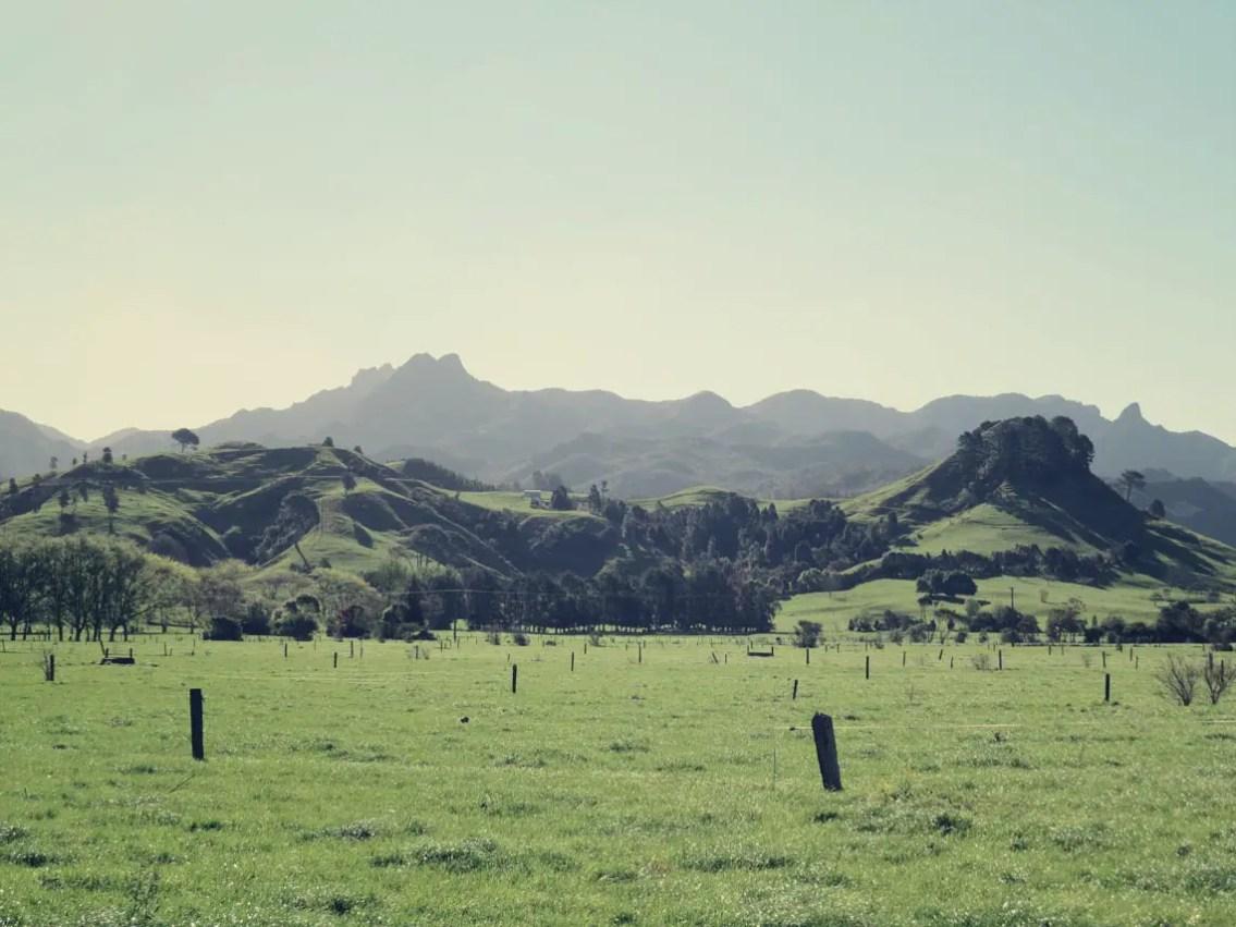 Auf dem Weg nach Tauranga