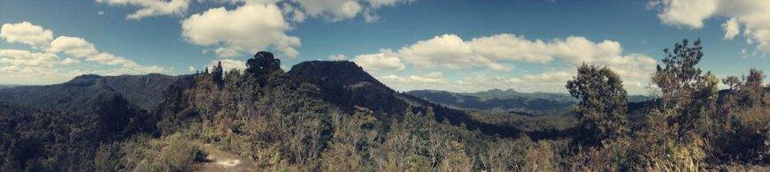 Kauaeranga Valley