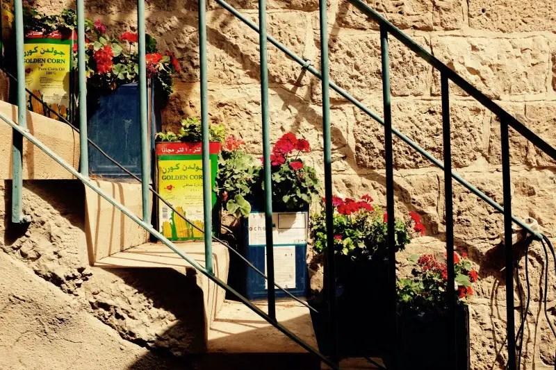 Blumenkästen in Jordanien