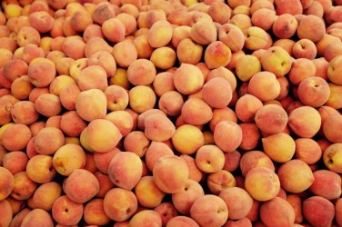 Obst, Amman, Jordanien