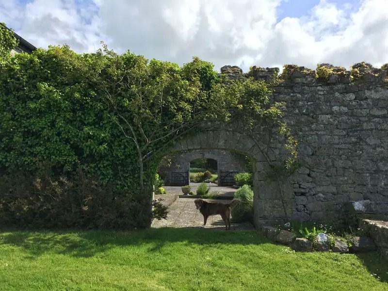 Flitterwochen in Irland