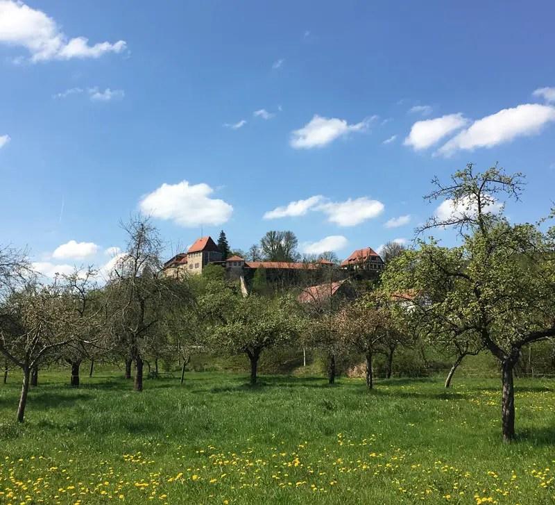 creuzburg_IMG_5502
