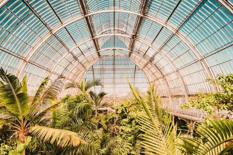 Flughafen BER Berlin Tropical