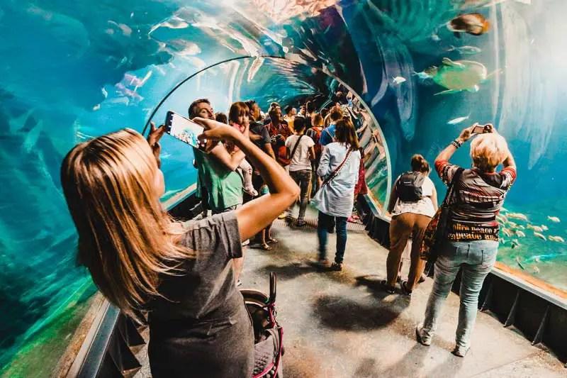 Flughafen BER Berlin Aquarium
