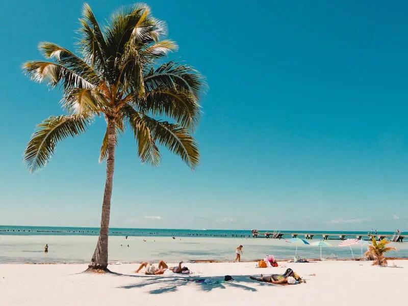 Key West Sehenswürdigkeiten Higgs Beach Strand