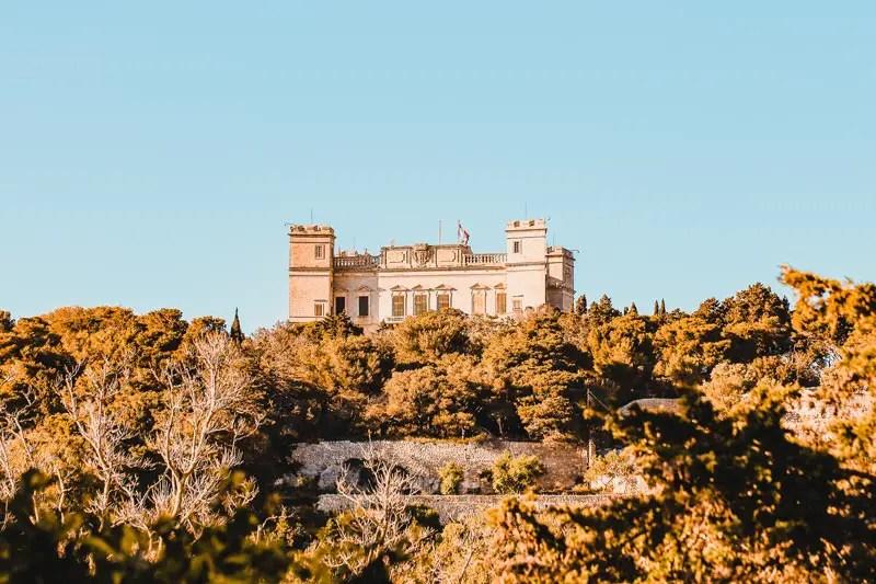 Malta Highlights Buskett Gardens