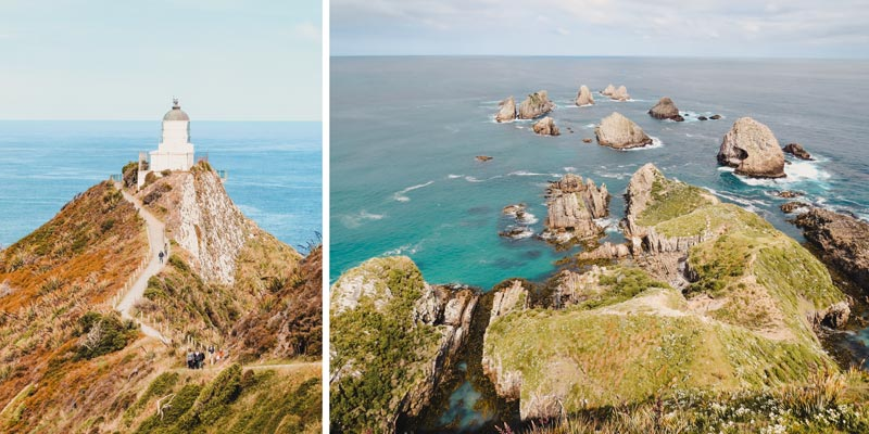 Neuseeland Südinsel Highlights Nugget Point