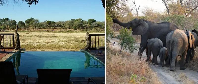 reisespatz_suedafrika