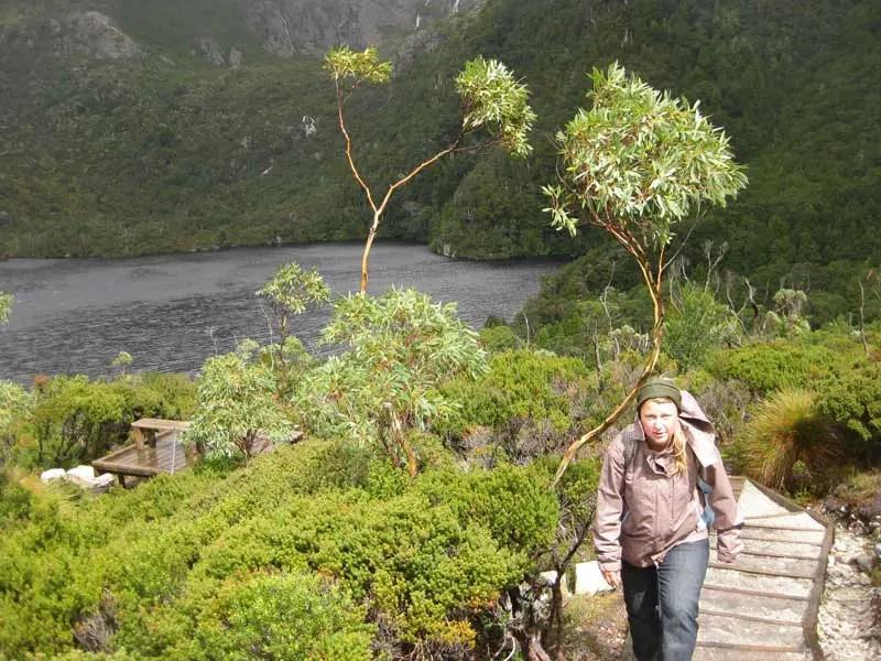 Wanderung in Tasmanien
