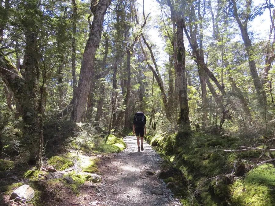 kepler track neuseeland
