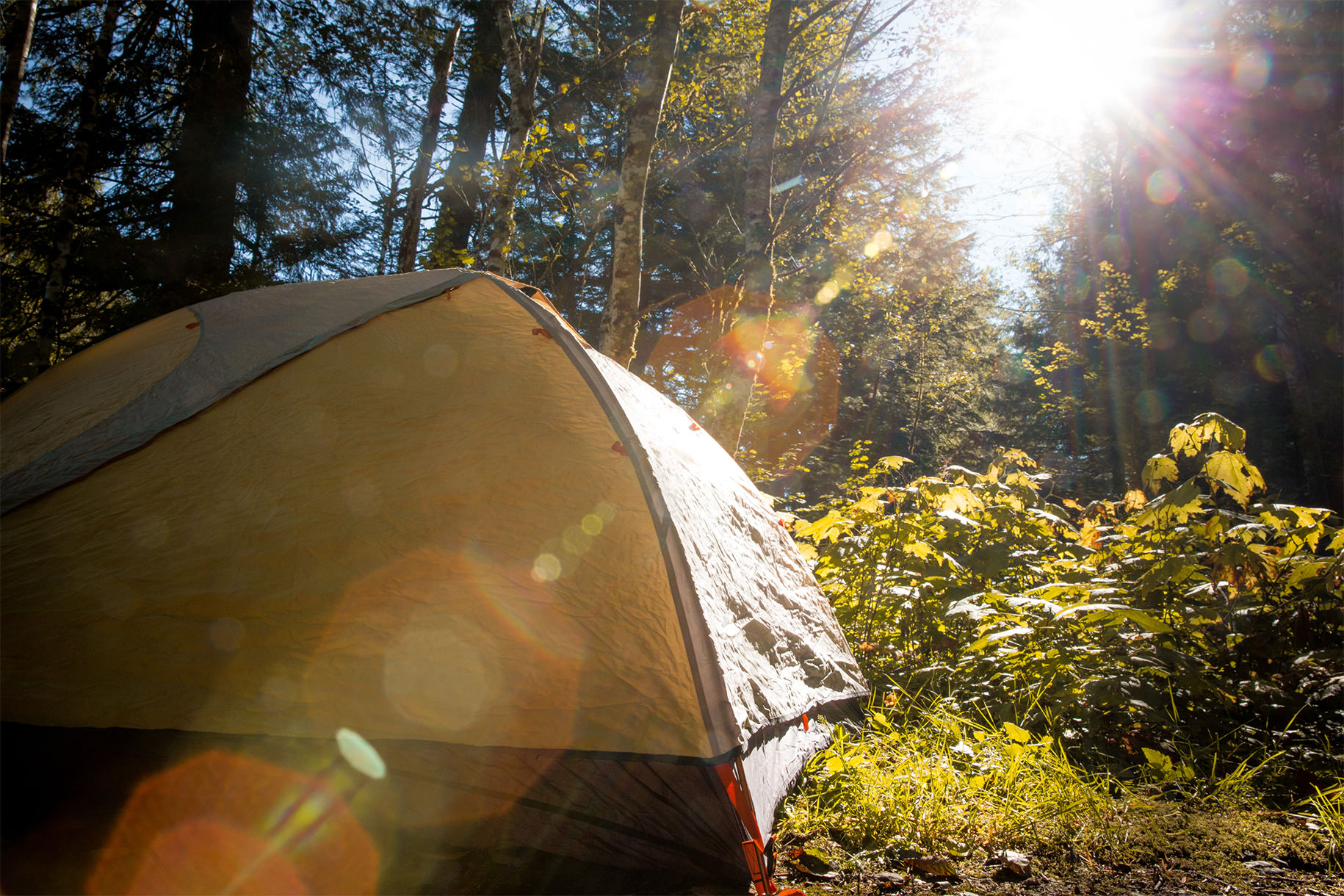 12-tips-for-camping-in-the-rain-wetrek_vn