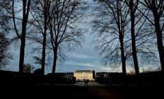 // Brühler Schlosspark 12-2019 //