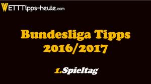 Bundesliga Prognose 1.Spieltag 2016 2017