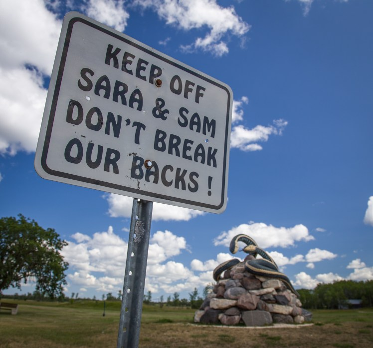 Keep off Sara and Sam!  Giant Garter Snake Statue in Inwood, Manitoba.