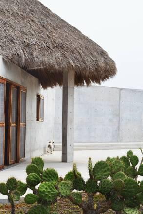 casa-wabi11-900x1350