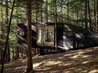 Cabin_Black_Forest_4-1