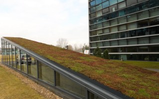 urban-roof-gradens-13