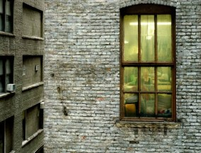 Out-My-Window13-640x488