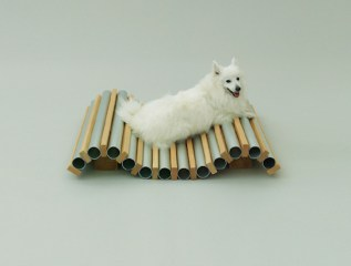Playful-Puppy-Shelters-9