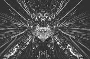 rorschachlandscapes-1